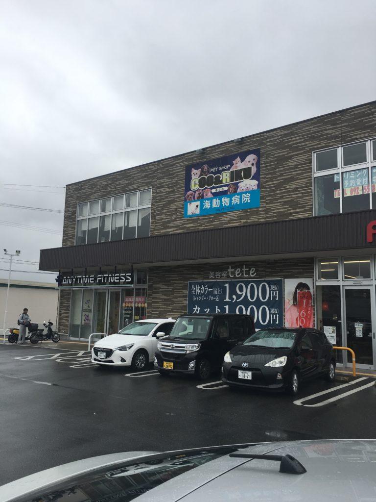 エニタイムフィットネス フォレストシティ春日店