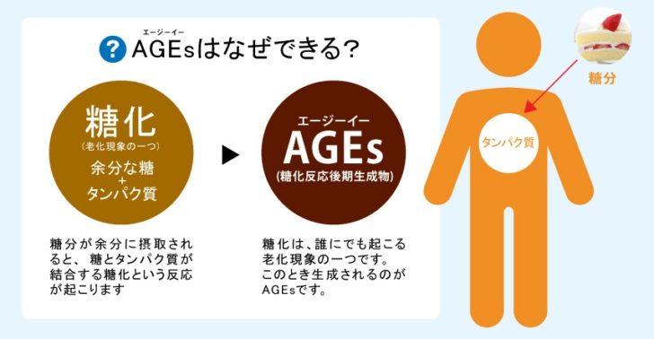 AGEs画像検索結果