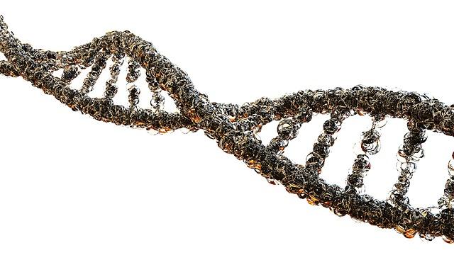 DNA画像検索結果