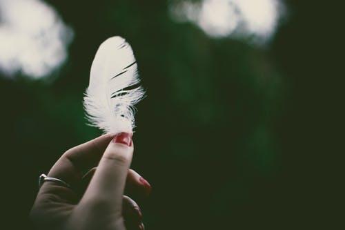 羽を持つ人画像検索結果