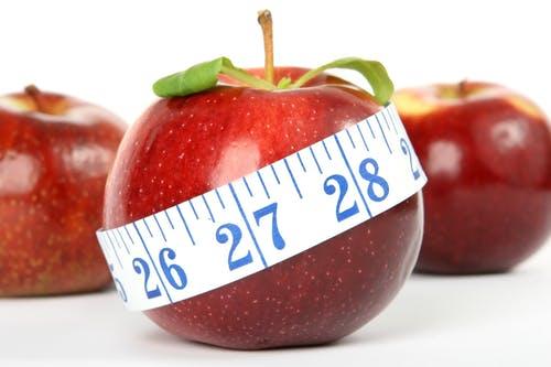 リンゴ画像検索結果