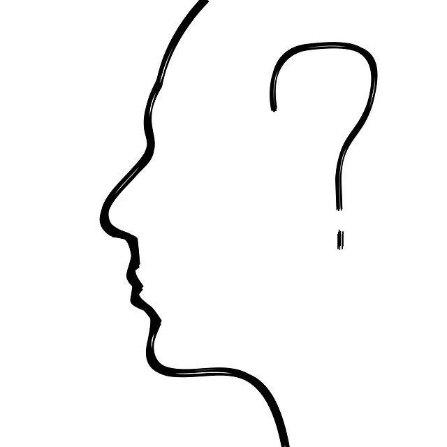 脳画像検索結果